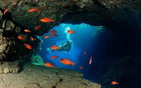 underwater malta why work in an office books where to scuba dive in malta