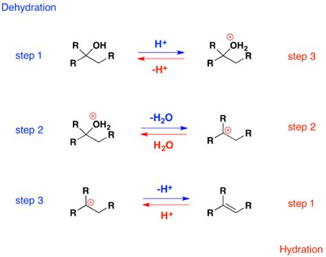 hydration reaction 10 4 elimination reactions of alcohols dehydration