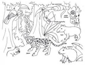 Coloring Pages Printable On Canopy Tree sketch template