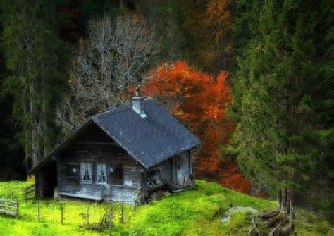 21 most isolated introvert homes lonerwolf