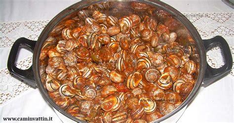 cucinare le lumache al sugo cazzavune alla barese lumache al sugo camin vattin