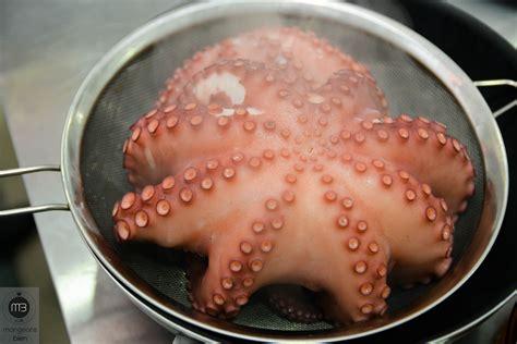 cuisiner un poulpe comment attendrir cuisiner un poulpe 224 l italienne