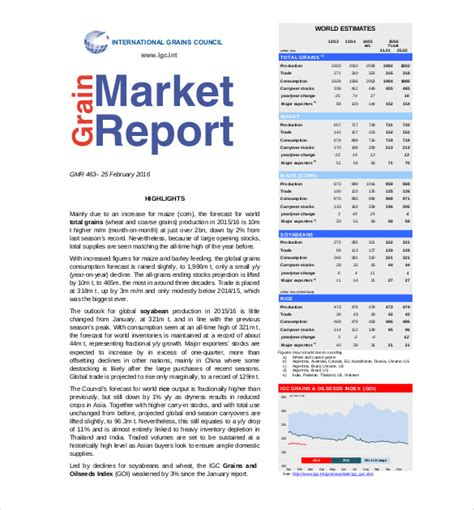 marketing report template 17 free sle exle