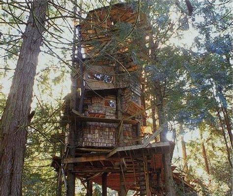 washington tree houses the scurlock treehouse in olympia washington tree houses pinterest olympia