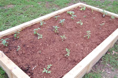 soil for raised beds raised garden beds soil 28 images mixing raised bed