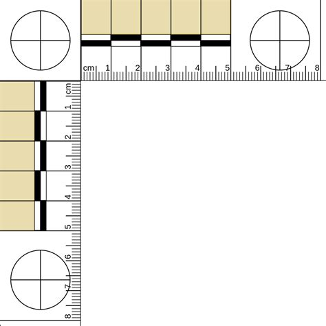 file mm  ruler tysvg wikimedia commons