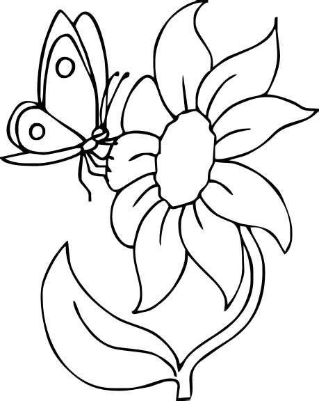 disegni di farfalle e fiori disegni di fiori da colorare foto 21 40 nanopress donna