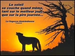 citation am 233 rindienne racines et sagesse am 233 rindiennes