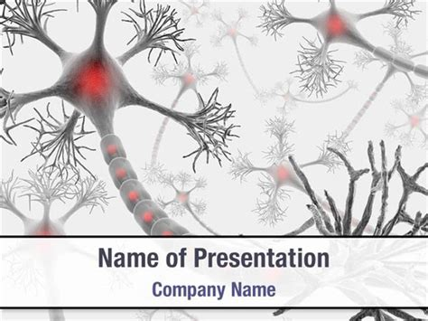 ppt templates free download biology neurons powerpoint templates neurons powerpoint
