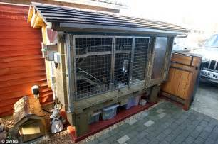 Air Conditioned Rabbit Hutch most pered pets in the world two rabbits live in 163 10 000 hutch daily mail