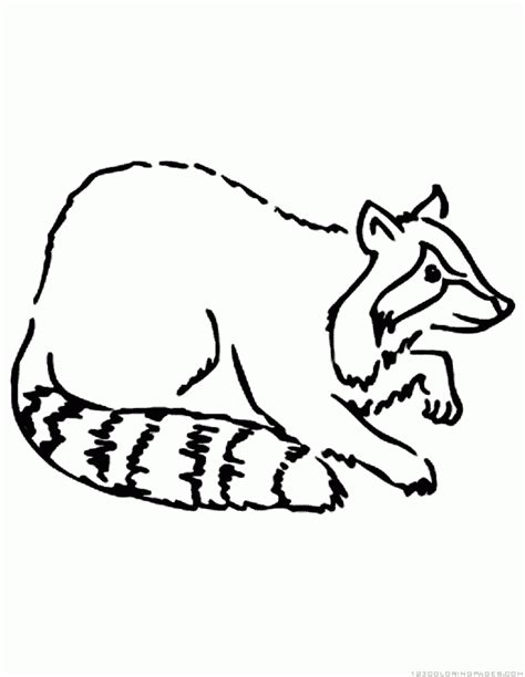 raccoon coloring page 42 coloring pages of raccoons raccoon coloring pages