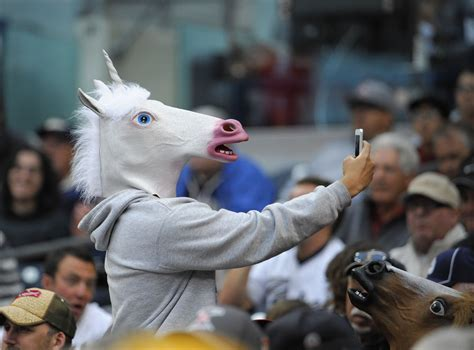 fake horse head amazon s funniest fake product reviews