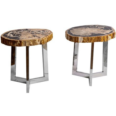 Petrified Wood Side Table Pair Of Petrified Wood Side Tables At 1stdibs