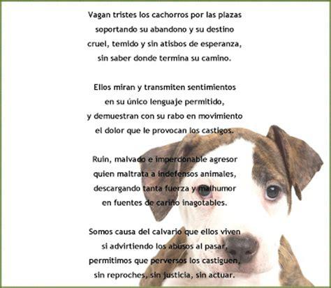 poema de los animales de 4 estrofas que rimen palabras poes 237 as y versos con rima maltrato animal