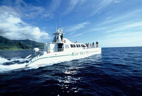 catamaran boat tour oahu ocean voyage tour 73 best hawaii images on pinterest oahu hawaii hawaii