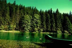 Bosques de coniferas rio barco a orillas de mar 201627 jpg
