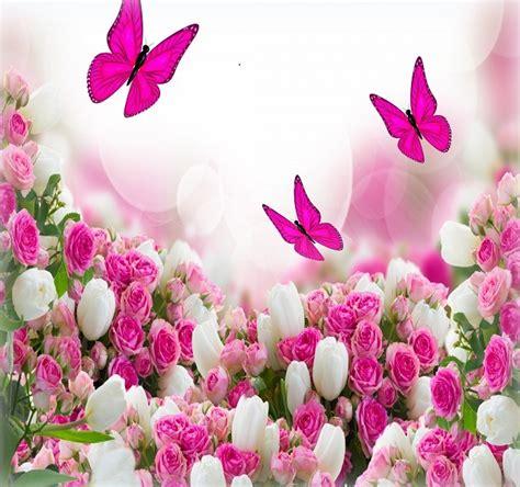 imagenes flores bellas gratis rosas hermosas para fondo de pantalla de moviles poemas