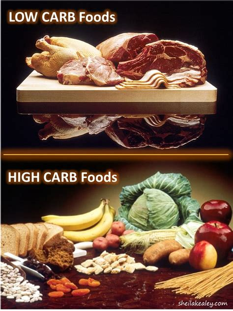 healthy fats that are low carb foods high in carbs and low food ideas