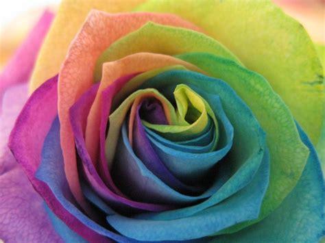 In Farbe Und Bunt by Der Farben Thread Seite 138 Allmystery