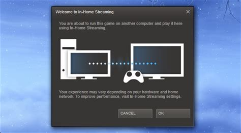 how to use steam in home