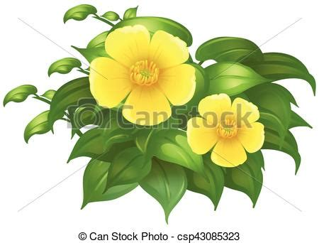 Buisson Fleur Jaune by Buisson Fleurs Vert Jaune Illustration Illustration