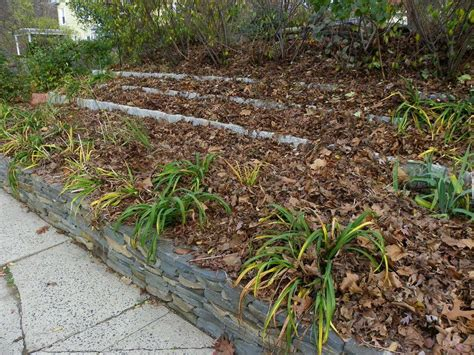 Collect Curbside Fall Leaves For Free Mulch Garden Org Leaf Mulch For Vegetable Garden