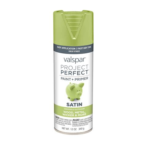 perfect paint shop valspar project perfect everglade glen enamel spray paint actual net contents 12 oz at