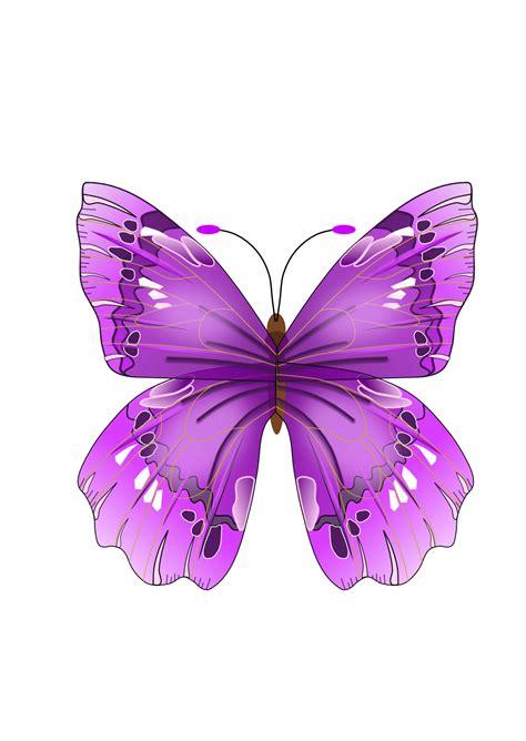 tattoo berwarna png 174 im 225 genes y gifs animados 174 im 193 genes de mariposas