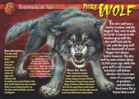 dire wolf dire wolf wierd n creatures wiki