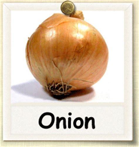 onion cache ela mobi скачать onion to картинки и фото на телефон бесплатно