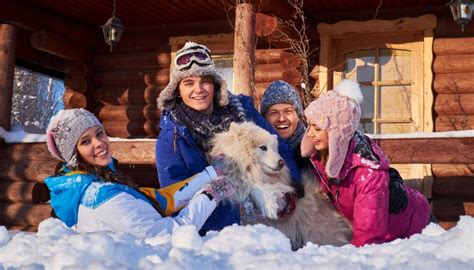 dog friendly holiday houses 47 best dog friendly holiday homes and cottages in the usa
