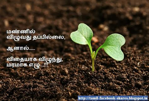 quotes in tamil quotesgram tamil motivational quotes quotesgram