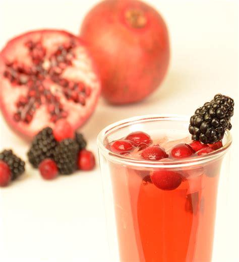 Harry N David Tea Pomegranate pomegranate berry 8 quart brew bags