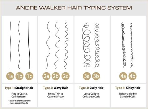 Andre Walker Hair Typing System by Hair Types Health Info