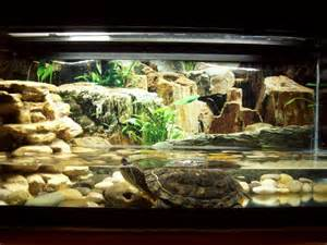 Here's a 30 gallon turtle aquarium with about 4 inches of water.