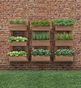 Wall Hanging Indoor Herb Garden - best 25 vertical gardens ideas on pinterest wall gardens vertical garden wall and tomato garden