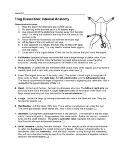 Frog Dissection Worksheet Answer Key by Frog Dissection Lab Report