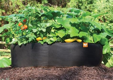 fabric raised garden beds victory 8 fabric raised garden bed 2 215 2 feet 0 0 glow home decor small living