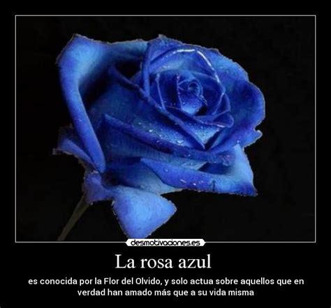 imagenes de rosas azules con frases de amor imagen de rosas azules con frases imagui