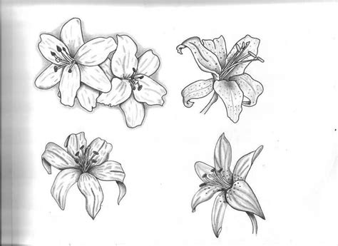 white lily tattoo designs 59 black and grey tattoos collection