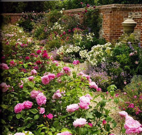 english rose garden designed by michael marriott the