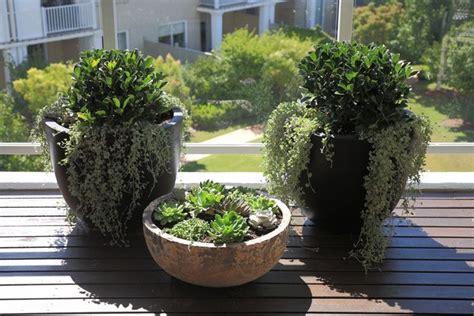 vasi per balconi vasi per balcone vasi per piante vasi per il terrazzo