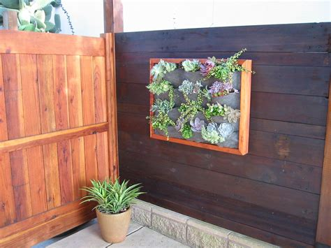 plants on walls wood framed succulent wall