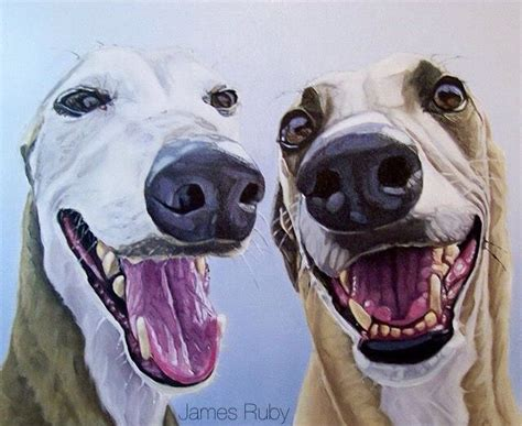 Detox From Whippets by 720 Best Images About Whippets And Greys In And