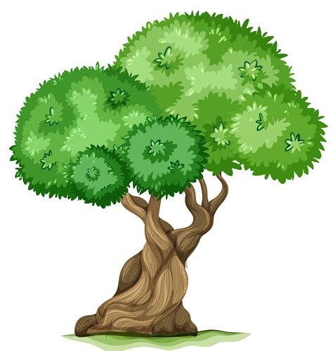 clipart png png tree clipart clipground