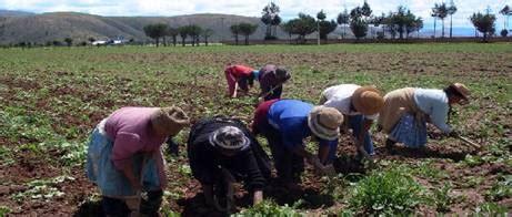 imagenes de la familia rural familia del co y de la ciudad peru monografias com