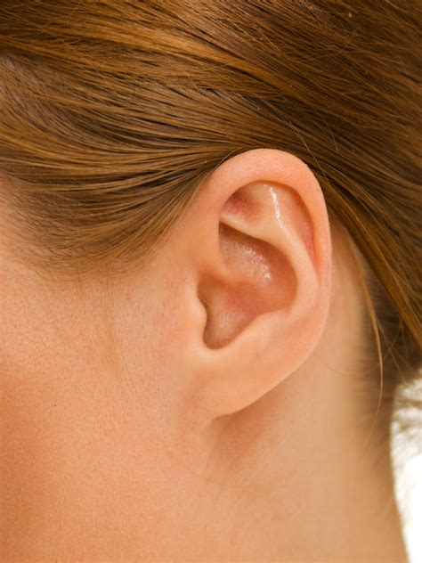 what to do if your has an ear infection why do i a pimple in my ear what doctors want you to