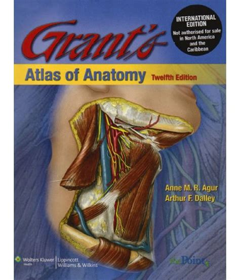Grants Atlas Of Anatomy Buy Grants Atlas Of Anatomy
