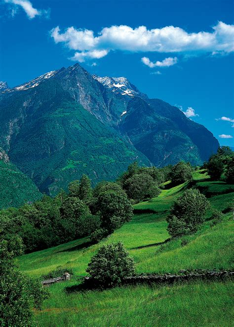 imagenes de paisajes que forman caras vinilos de paisajes monta 241 a viniliza