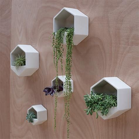 How To Make Wall Planters by Hexagon Wall Planter White For Keeps